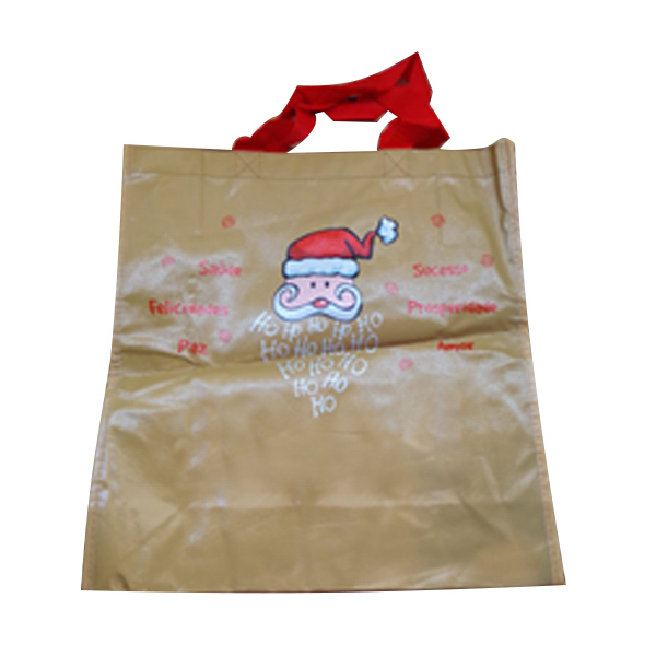 Eco- friendly Non woven shopping bag