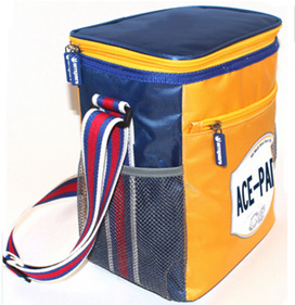 Ice Cream Cooler Bag