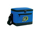 New design Cooler Bag