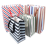 Striped Paper Gift Bag